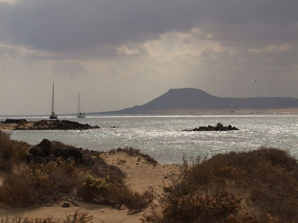Isola di Lobos