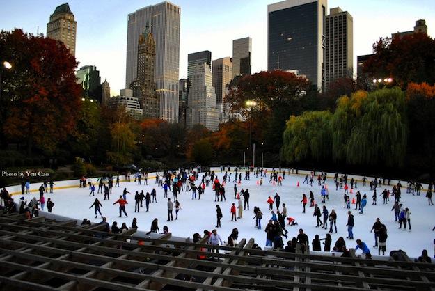 Central park a natale viaggi e vacanze for Immagini new york a natale
