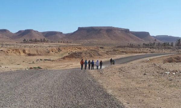 social trekking2