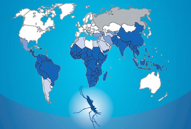 Profilassi antimalarica