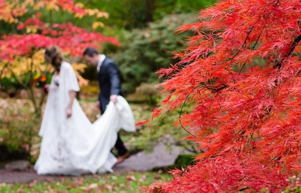 viaggi in autunno in giappone