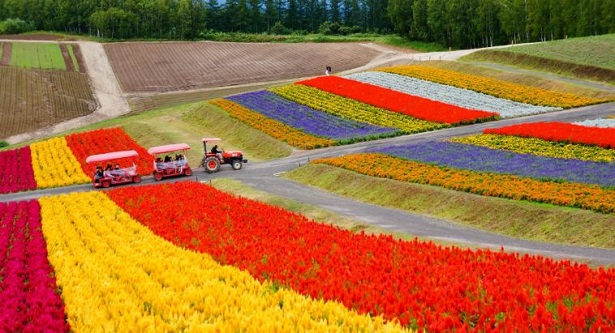 Hokkaido, Giappone: luoghi di interesse