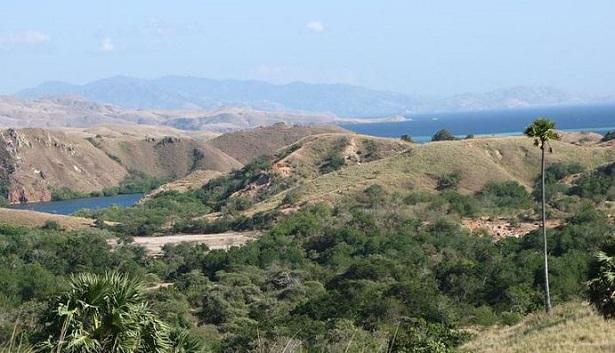 Isola della Sonda: foto