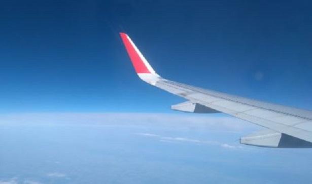 Si può portare la piastra in aereo