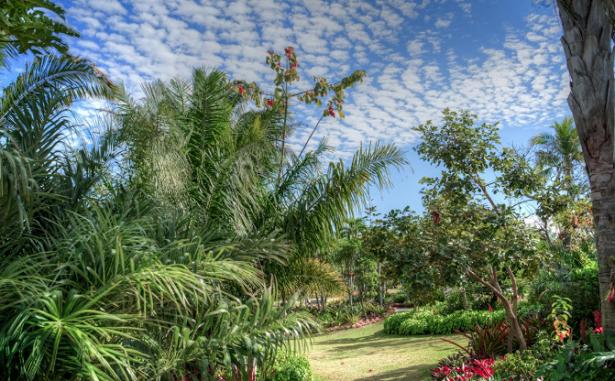 Giardino Botanico di Napoli